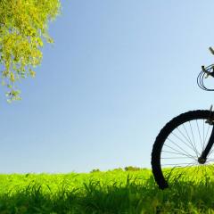 Minha Querida Bicicleta